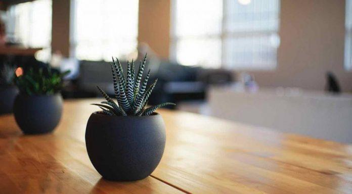 l importance de la clarification de la purification et du. Black Bedroom Furniture Sets. Home Design Ideas